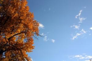 Fall Missoula Sky
